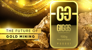 Gold mining: 30 years of success